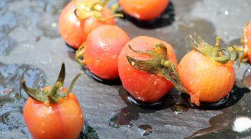 Syngenta muestra en Fruit Logística sus innovadoras variedades de semillas