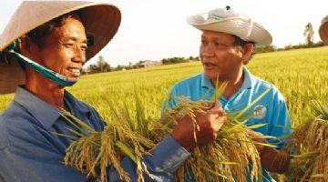 El Índice de Acceso a las Semillas clasifica a Bayer en 2º lugar por su apoyo a los pequeños agricultores en Asia