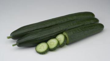 BASF Vegetable Seeds ofrece el doble de opciones para cultivar pepino largo en invierno